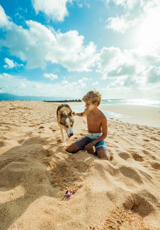 Dreng og hund på strand